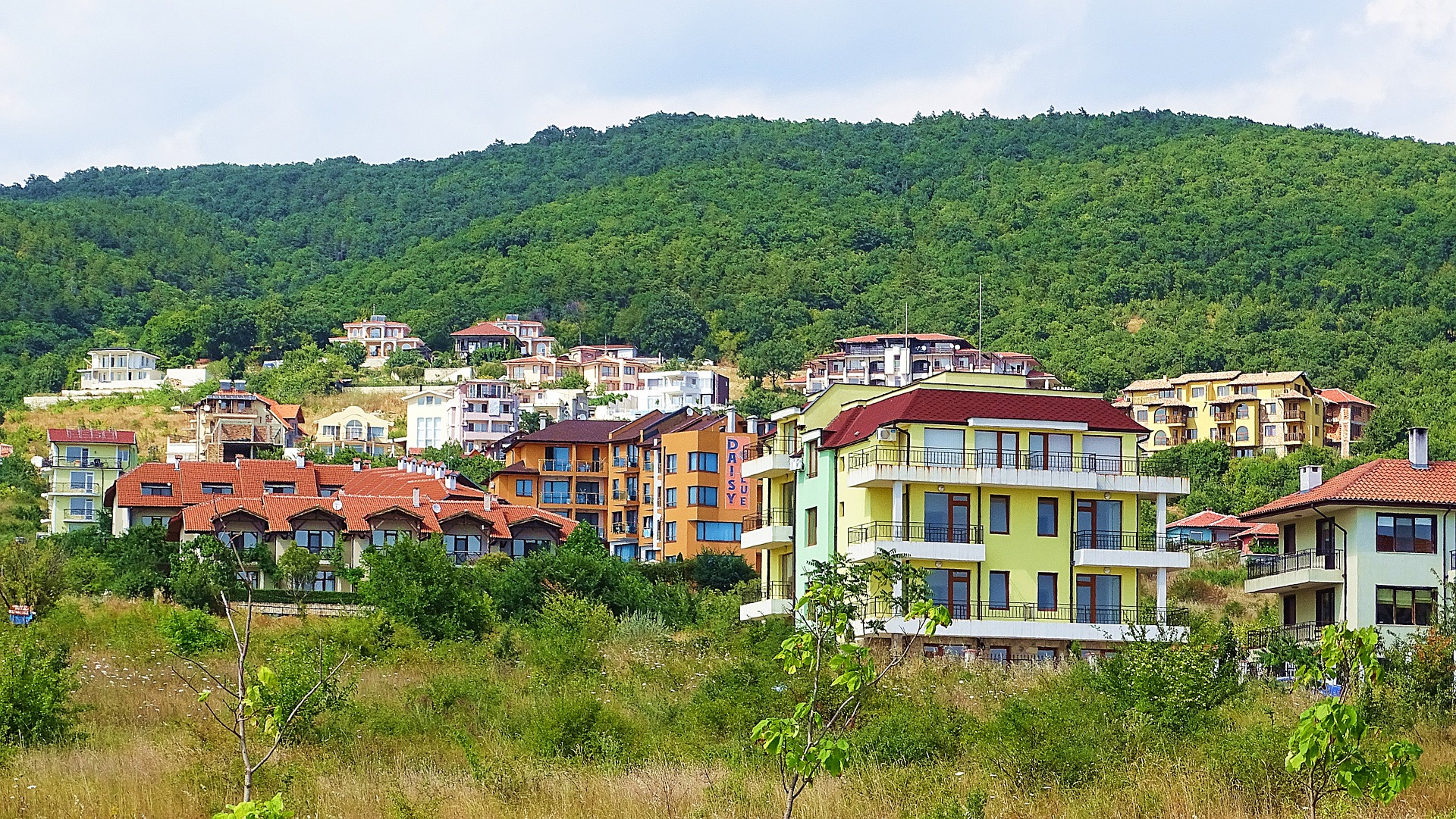 Bulgaria Buying Guide
